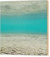 Underwater Sand Beach Wood Print