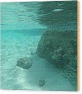 Underwater Tropical Island Photography Wood Print