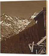 Unending Views In Sepia Wood Print