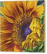 Unfurling Beauty - Cropped Version Wood Print