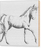 Unicorn Wood Print by Alexander M Petersen