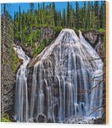 Union Falls Wood Print