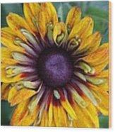 Unique Sunflower Wood Print