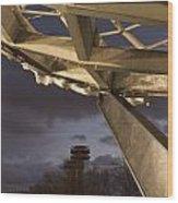 Unisphere IIi Wood Print