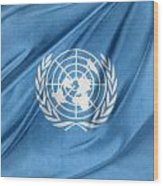 United Nations Wood Print