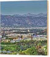 Universal City Warner Bros. Studios Clear Clear Day Wood Print