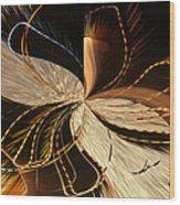 Universe Orbits Wood Print