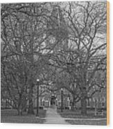 University Hall And Pathway Osu Wood Print