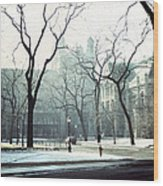University Of Chicago 1976 Wood Print by Joseph Duba