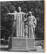 University Of Illinois Alma Mater Wood Print