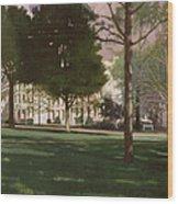 University Of South Carolina Horseshoe 1984 Wood Print