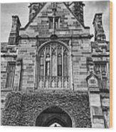 University Of Sydney-black And White V4 Wood Print