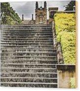 University Of Sydney Steps Wood Print