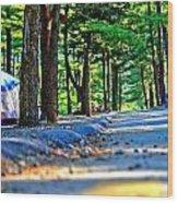 Unknown Destination Wood Print