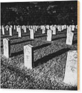 Unknown Soldier Cemetery Wood Print