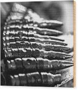 Unloaded Wood Print by Kim Lagerhem