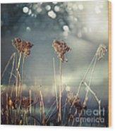 Unloved Flowers Wood Print