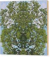 Unnatural 46 Wood Print