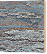 Untamed Sea 1 Wood Print by Carol Cavalaris