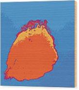 Untitled 2014, No. 1 Wood Print