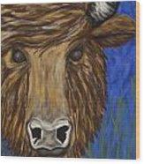 Untitled Buffalo 1 Wood Print