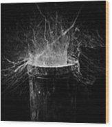 Untitled Cobweb Wood Print