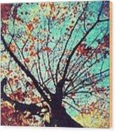 Untitled Tree Web Wood Print