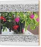 Unusual Simultaneous Bloomers 2 Wood Print