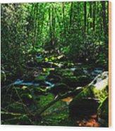 Up A Little River Wood Print
