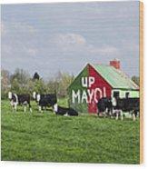 Up Mayo Wood Print