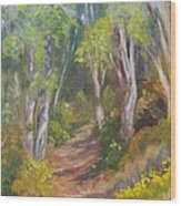 Uphill Path-batiquitos Wood Print