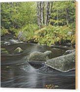 Upper Bear River In Early Autumn Nova Wood Print