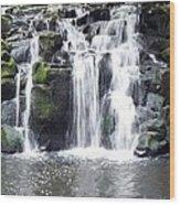 Upper Beaver Falls Wood Print