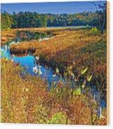 Upper Cary Lake In The Adirondacks Wood Print
