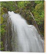 Upper Cougar Falls Wood Print