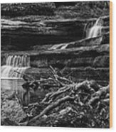 Upper Dells Wood Print