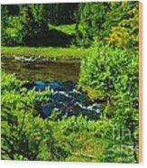 Upper Dewey Creek Wood Print