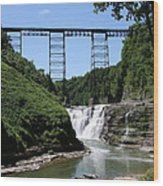 Upper Falls Of The Genesee River  Wood Print