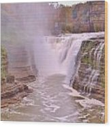 Upper Falls On The Genesee River Wood Print