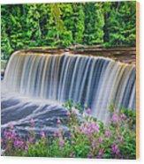 Upper Falls Wood Print by Thomas Pettengill