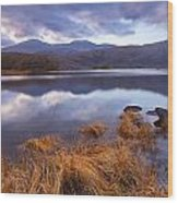Upper Lake Killarney Wood Print