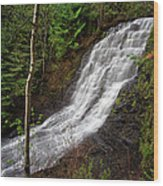 Upper Little Falls Wood Print