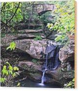 Upper Old Mans Cave Falls Wood Print