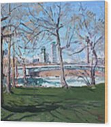 Upper Rapids Of Niagara Falls Ny Wood Print