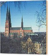 Uppsala Cathedral Wood Print