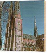 Uppsala Cathedral Spires  Wood Print