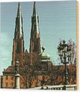 Uppsala Cathedral Steeples Wood Print