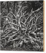 Uprooted Wood Print