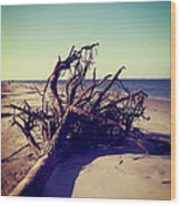 Uprooted Tree On The Beach Wood Print