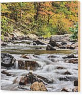 Upstream Wood Print by JC Findley
